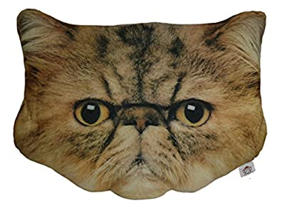 Cheeky Baldrick Cat Face Cushion (Large)