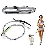 Cadrim Hunde Joggingleine mit verstellbarem Hüftgurt Bungee Leine zum handfreien Laufen/Fahrrad Fahren (Grau) (grau