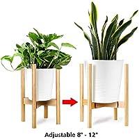 Soportes para plantas | Amazon.es