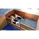 Birds' Park Plastic Mat For Cage Flooring Size: 1X3 Feet 'Good For Dog Goat Rabbit & Guinea Pigs'