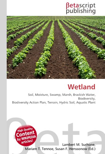 Wetland: Soil, Moisture, Swamp, Marsh, Brackish Water, Biodiversity, Biodiversity Action Plan, Terrain, Hydric Soil, Aquatic Plant