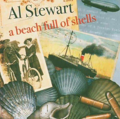 a-beach-full-of-shells