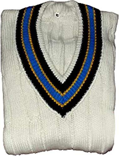 3M CW Herren Cricket-Pullover, V-Ausschnitt, schwere Wolle, erhältlich (ärmellos oder langärmlig), 52