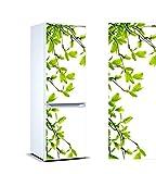 Vinyl Stickers Mandelzweige für Kühlschrank.   Kühlschrank Aufkleber   Verschiedene Maße 185x60cm  Klebstoffbeständig und einfache Anwendung   Stilvoller Design-dekorativer