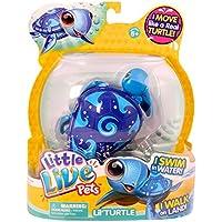 Little Live Pets Lil Turtle Single Pack - Wave