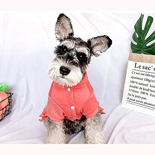 Haustierbekleidung Pet Kleidung Puppy Girl Dog Weiche warme Kleidung Frühling und Herbst Abschnitt Pet Bow Super Cute Puppy Rock Grau/Pink ()