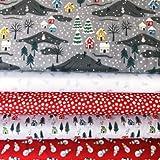 Lewis & Irene LEWFB083-5 Stoffbündel für Weihnachten, 55