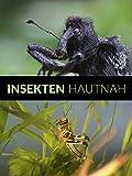 Insekten hautnah