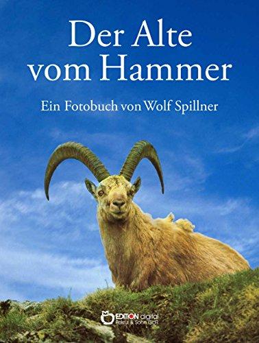 Der Alte vom Hammer: Eine Bilderbuchgeschichte aus den Bergen der Schweiz (Elch Berg Mooses)