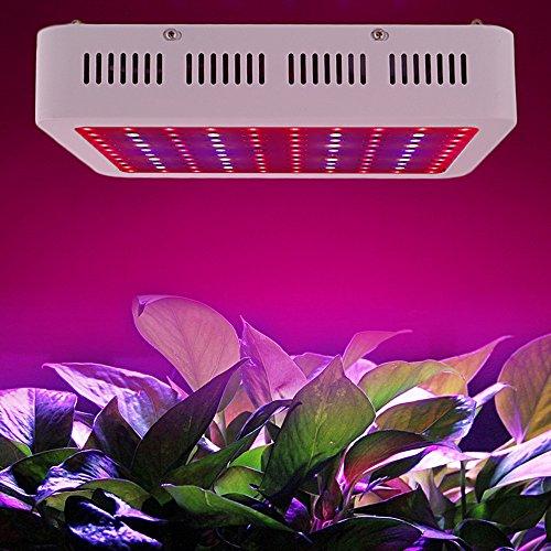ciffost® 1000 W installation à LED Grow éclairage, lampes pour plantes Indoor Panneau végétale Double puce plein spectre rouge bleu Grow Lampe pour serre Hydroponie plantes Indoor amusants et Flower (Blanc)