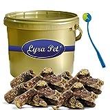 3 kg Rinderlunge Lyra Pet Dog Premium Leckerli Hund im Eimer GOLD+ Ballschleuder