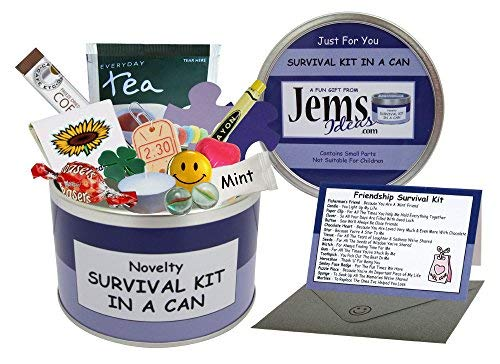 Kit di sopravvivenza per amicizia, in barattolo di latta, novità regalo divertente per un amico speciale, - per compleanno, Natale, o per altre occasioni -, Purple/Lilac, Approx 10cm x 6cm