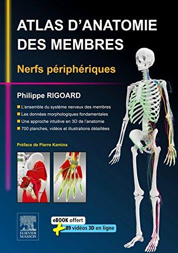 En ligne Atlas d'anatomie des membres: Nerfs périphériques pdf, epub ebook