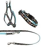 Ein Set - Halsband, Hundegeschirr Step-In, Hundeleine - verstellbar, Zugentlastung, stabil, bequem, weich, Farbe Blau - TX-ZOO/Za-BLUE