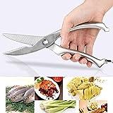 Accueil Découpeuse en acier inoxydable de 10 pouces, ciseaux à outils en os de poulet à base de poisson de volaille de cuisine, emballage de cas Cuisine