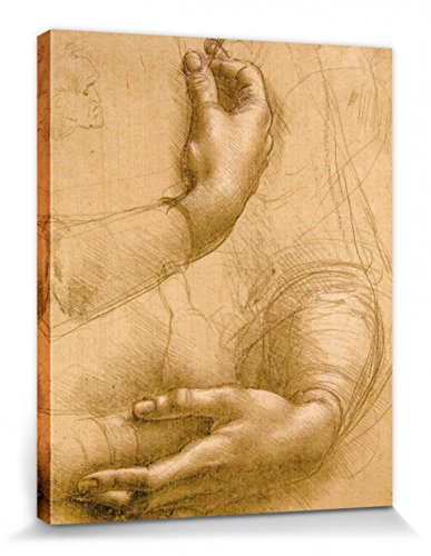 1art1 87406 Leonardo Da Vinci – Handstudie, Circa 1478 Poster Leinwandbild Auf Keilrahmen 50 x 40 cm