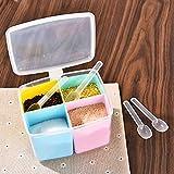 Kunststoff Würze Box transparent Würze Salz Jar Spice Zucker Aufbewahrungsbox für Home Küche Free Size Square - 4 Grids