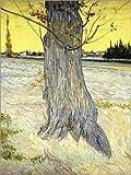 Posterlounge Forex-Platte 120 x 160 cm: Die alte Eibe von Vincent Van Gogh/Bridgeman Images