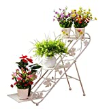 JZX Flower Stand, Rack da Pavimento in Ferro battuto