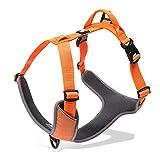 Warmcasa Einstellbare Hundegeschirr Gepolsterter Atmungsaktive 3M Reflektierende Brustgeschirre für Kleine, mittlere, große Hunde(S, Orange)