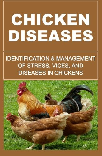Chicken Diseases: Identification And Management Of Stress, Vices, And Diseases In Chickens