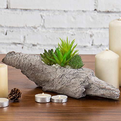 MyGift Dekorativer Blumentopf aus Treibholz, für Sukkulenten, 2 Stück -