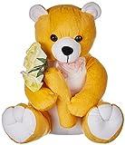 Amardeep and Co Mustard Teddy With Flowe...
