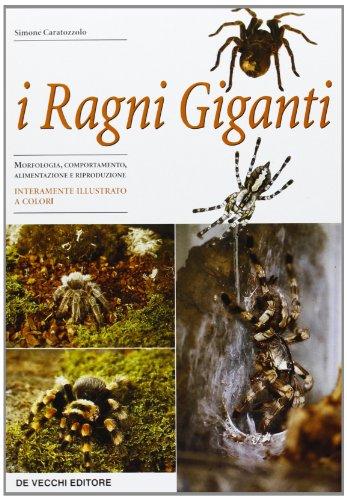 I ragni giganti