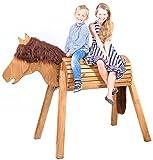 Legno cavallo (Volt igier cavallo) wildpferd Dakota, fatto a mano in Germania, Marche di giocattoli in migliore qualità di Wild bambini, robusto, stabile, sicuro, il regalo per ragazza, per esterni e interni, assemblato, facile montaggio immagine