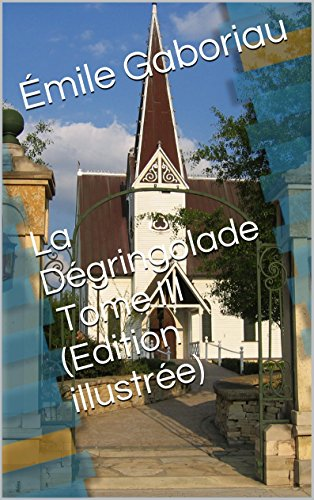La Dégringolade Tome III (Edition illustrée)
