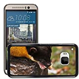 Grand Phone Cases Carcasa Funda Prima Delgada SLIM Casa Case Bandera Cover Shell para // M00141648 Giallo Martora dalla gola Marten // HTC ONE M9