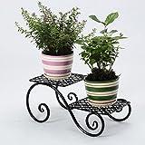 CKH Schmiedeeisen Blumenregal Balkon Europäischen Multi-Layer-Boden Typ Indoor Fleischigen Blumenständer Green Pflanzer Rack 2 (Color : Black)