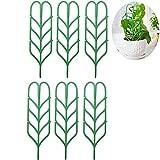 Portavaso da giardino da Jia Inc DIY mini supporto per piante rampicanti 6 Pack