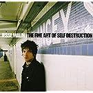 Fine Art of Self Destruction - Deluxe by Jesse Malin (2013-08-03)