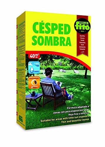 semillas-fit-441-semillas-fit-441-csped-sombra