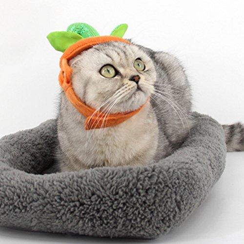 Zhhlaixing Haustierprodukt Elastic Pet Cosplay Dogs Cats Soft Halloween Cute Pumpkin Costume Fancy Dress (Cute Halloween Cat)
