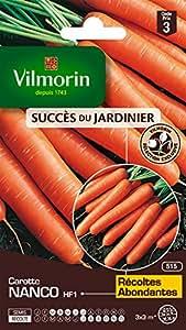 Vilmorin 3188143 Pack de Graines Carotte Nanco HF1 Création