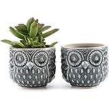 T4U 7CM Ceramic Owl Pattern Sucuulent Plant Pot/Cactus Plant Pot Flower Pot/Container/Planter Grey Package 1 Pack of 2