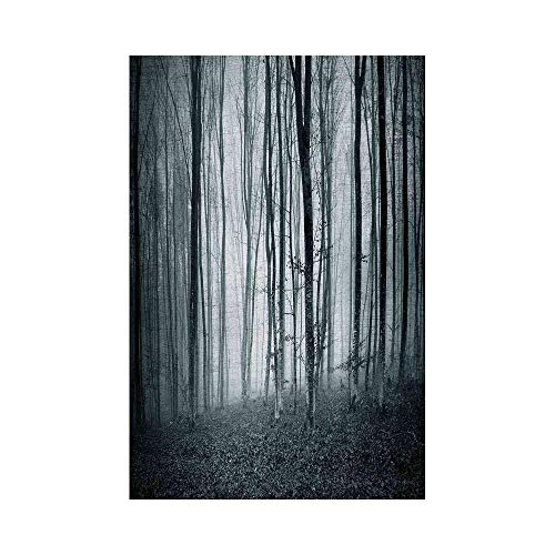 VAICR Home Garden Black and White Grunge Shaded Color Foggy Mystic Dark Forest Tall Trees Horror Theme Print Black Whiteor Garden Decorative Garden Flag for Outdoor Lawn and Garden Home -