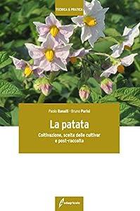 I 10 migliori libri sulle patate