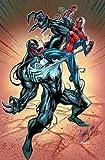Marvel Comics Venom VS Spiderman Poster (61x 91,4cm)