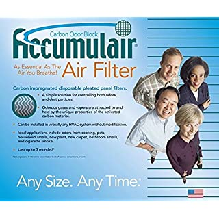 20x20x2 (19.5x19.5x1.75) Carbon Odor Block Aftermarket Day and Night Replacement Filter by Accumulair