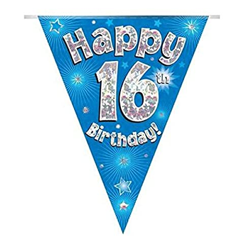 Sofias Closet Birthday Party Bunting Banner 11 Flags Triangle Boys Girls Blue Pink 1st 16th 21