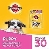 Pedigree Puppy Wet Dog Food, Chicken Chunks in Gravy, 70 g (Pack of 30)