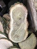 KJR Holzmanufaktur Baumscheibe, Holzscheibe,ca. 50 x 20 x 3 cm, Tischplatte, Eiche
