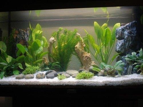 TM Aquatix Aquarium Sand Natural Fish Tank Gravel Plant Substrate (20kg, Light 2-3mm) 4