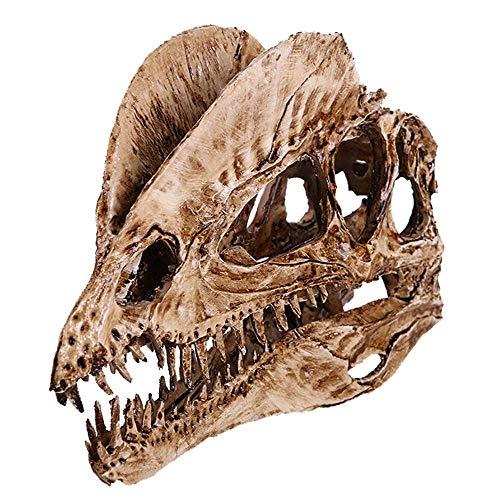 Dinosaurier Zahn Schädel Fossil Lehre Skeleton Modell Harz Handwerk Tier Schädel für Aquarium Ornament Wohnkultur, Halloween Dekoration (Doppelkrone Drachen)