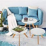 PIONIN - Table Bistro avec chaises - Table et chaises Pliantes - Salon de Jardin 3...