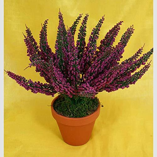 Erika 28cm Fuchsia -ohne Topf- DP Kunstpflanzen Kunstblumen Erikabusch künstliches Heidekraut künstliche Blumen Pflanzen Blühpflanze