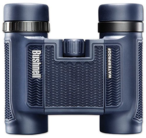 bushnell-h2o-waterproof-fogproof-compact-roof-prism-binocular-8-x-25-mm-black